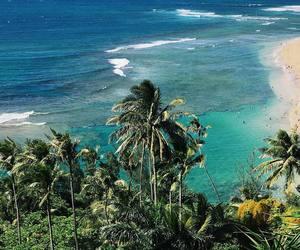 hawaii, Island, and kauai image