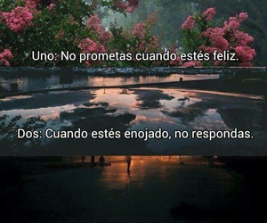 frases, phrases, and tumblr image