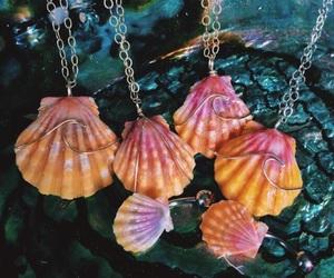 shell, beach, and fashion image