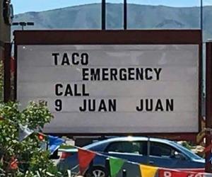taco, funny, and puns image