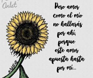 amor, pareja, and dos image