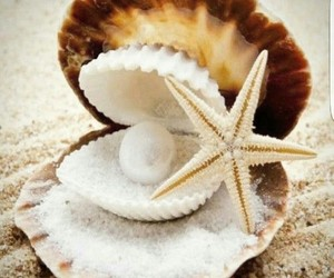 pearls, shell, and beach image