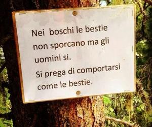 bosco, frasi, and inquinamento image