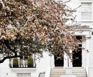 door, explore, and house image