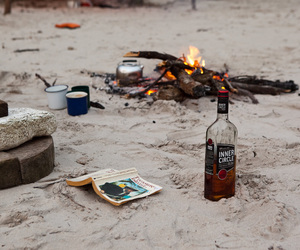 alcohol, beach, and sand image
