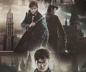 harry potter, newt scamander, and hogwarts image