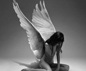 fantasy, strange, and ángel image