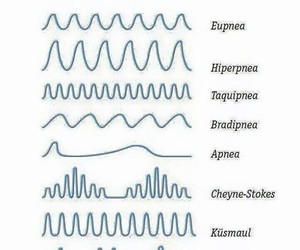 breathing, medicine, and medicina image