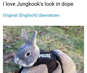 bunny, funny, and kpop image