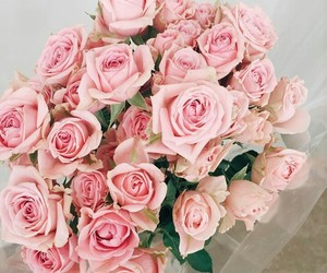 flowers, gorgeous, and pink image