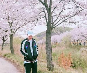adv, rapper, and cherry blossoms image