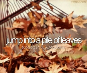 Dream, leaves, and bucket list image