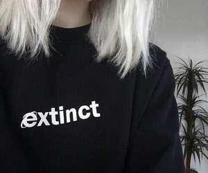 aesthetic, extinct, and black and white image