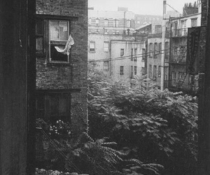 black and white, window, and city image
