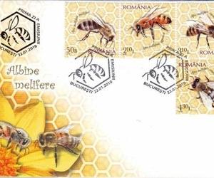 rumania, estampillas, and filatelia image