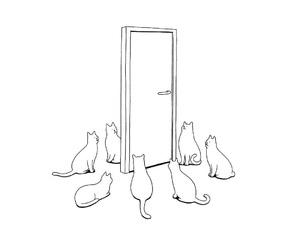 blackandwhite, cat, and cats image