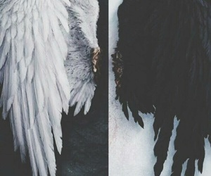 angel, white, and black image