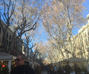 Barcelona, trees, and winter image
