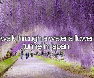 japan, bucket list, and flowers image