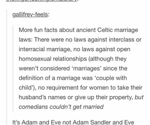 funny, lgbtq, and marriage image