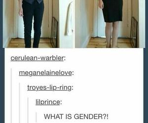 funny, lgbtq, and tumblr image