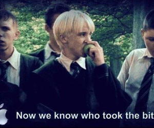 apple, draco malfoy, and harry potter image
