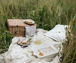 picnic and nature image