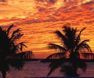 orange, beach, and sunset image