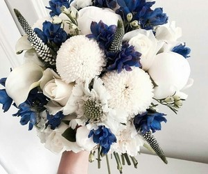 flower, lovely, and romantic image
