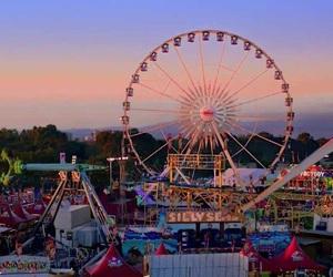 amusement park, beach, and fun image
