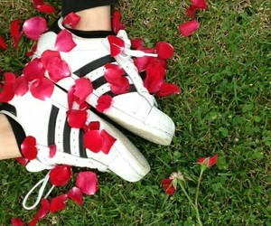 adidas, flower, and red image