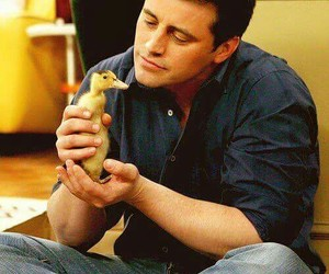 friends, Joey, and duck image