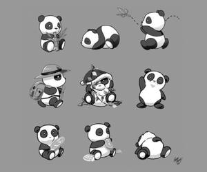 panda, lockscreen, and wallpaper image