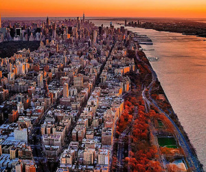 city, new york, and quotes image