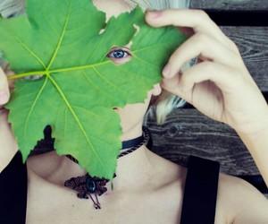 تفسير ورق العنب في المنام رؤيا ورق عنب اخضر في الحلم