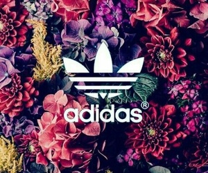 newest c423c 4f784 adidas, flowers, and wallpaper image