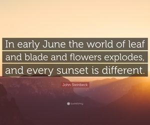 june and quotes image