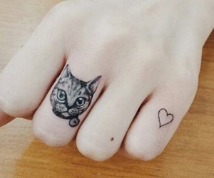 cat, tattoo, and finger image