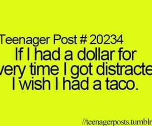 dollar, great, and taco image