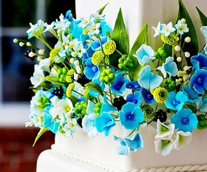 blossoms, flowers, and blue image