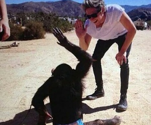 monkey and niallhoran image