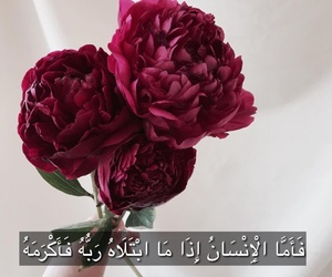 allah, flower, and hand image