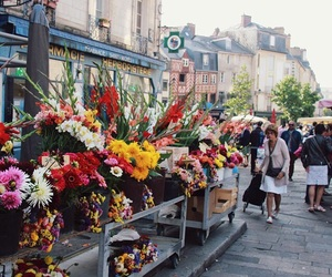 city, flowers, and colorful image