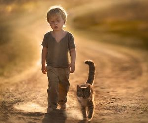 cat, boy, and friends image