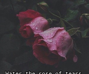 cry, rouse, and cry_baby image