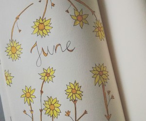 flower, june, and summer image