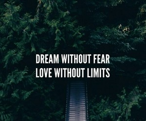 quotes, Dream, and forest image