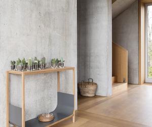 cactus, decor, and design image