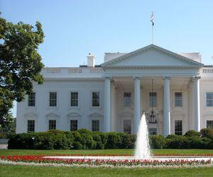 usa, Washington DC, and white house image