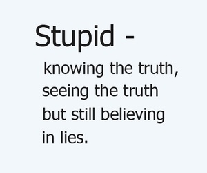 quote, lies, and stupid image